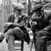Kalıcı arkadaşlıklar ve bir değerlendirme